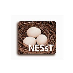 NESst300x300